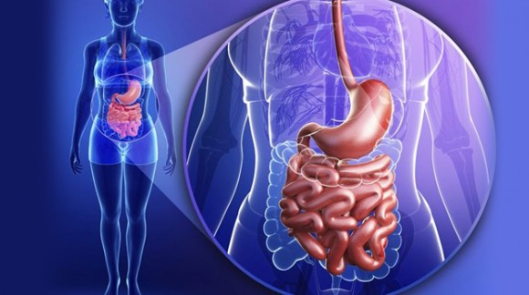 Prevention and treatment of the gastrointestinal tract